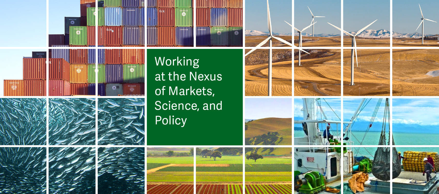 Working at the Nexus of Markets, Science, and Policy banner